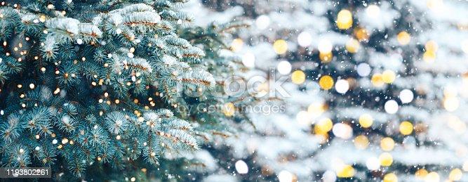 istock Christmas tree background 1193802261