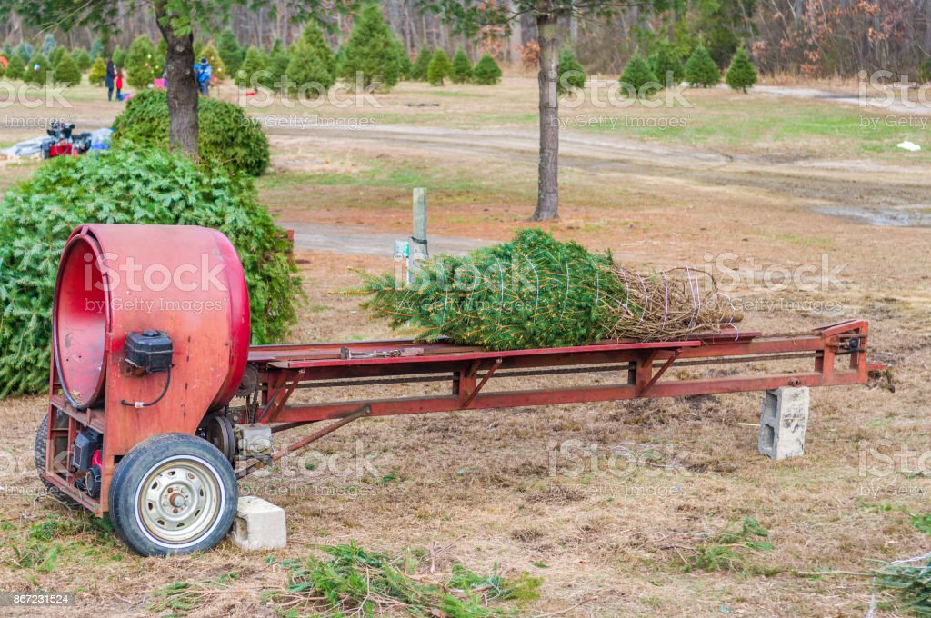christmas tree baler royalty-free stock photo - Christmas Tree Baler Stock Photo & More Pictures Of Agriculture IStock