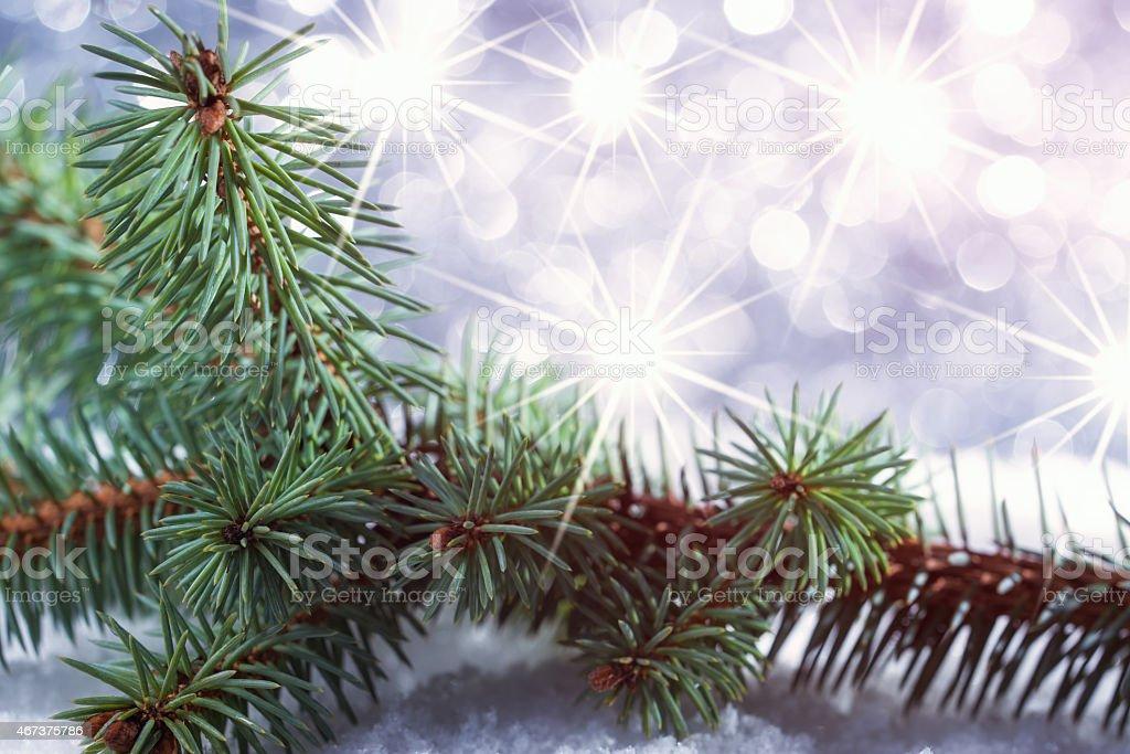 Stella Albero Di Natale Luminosa.Ramo Di Albero Di Natale Su Sfondo Astratto Con Stella Luminosa