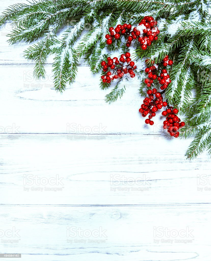 Christmas tree branch with red berries. Winter holidays decoration stock photo