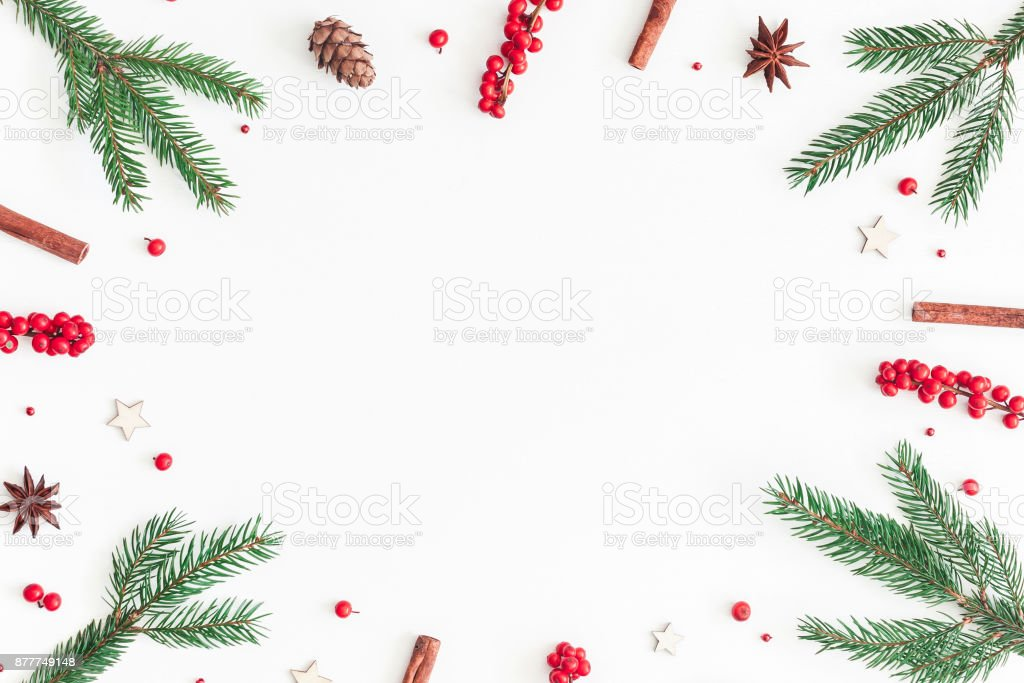 christmas tree branches and red berries flat lay top view royalty free stock