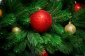 istock Christmas tree branches  background. Fir with new year toy balls and fir cones 1072381314