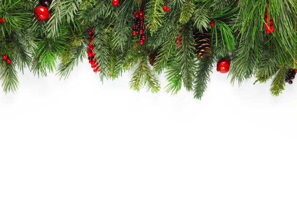 christmas tree branches background - lush foliage stock pictures, royalty-free photos & images
