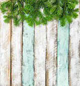 Spruce branches on white background. Christmas pattern