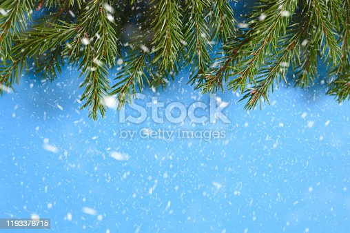 2020, 2021, advent, background, blank, branch, celebration, christmas, closeup, cold, concept, coniferous, copy space, day, decor, decoration, evergreen, falling, festive, fir, flat lay, frame, frozen, green, happy, holiday, isolated, light, merry, minimal, natural, nature, needles, new year, nobody, prickly, season, snow, snowflakes, snowy, space, surface, texture, top view, tree, twig, wall, weather, blue, winter