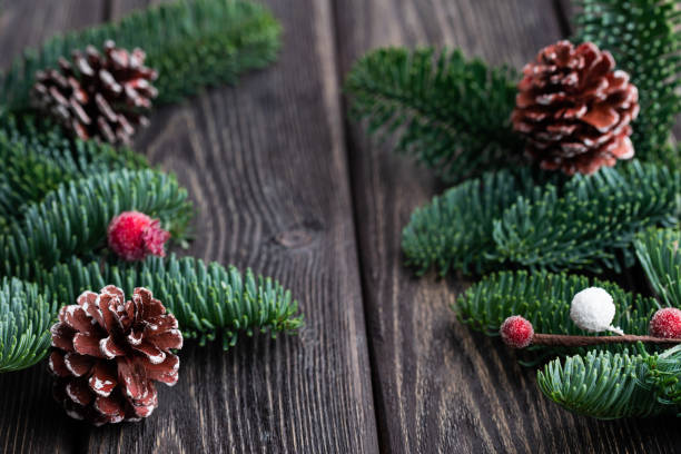 Christmas tree branches with cones and frozen berries. Rustic new year. stock photo
