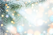 istock Christmas tree branches with frost 1262354200