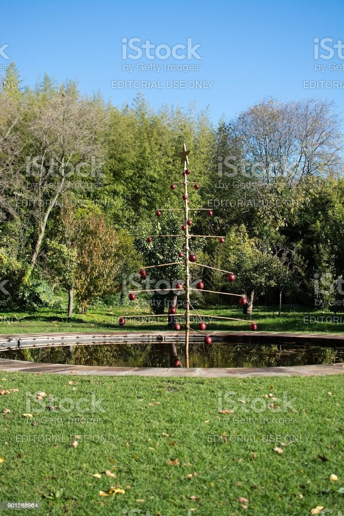 Christmas tree by the pond in Jardin de la Concepcion stock photo