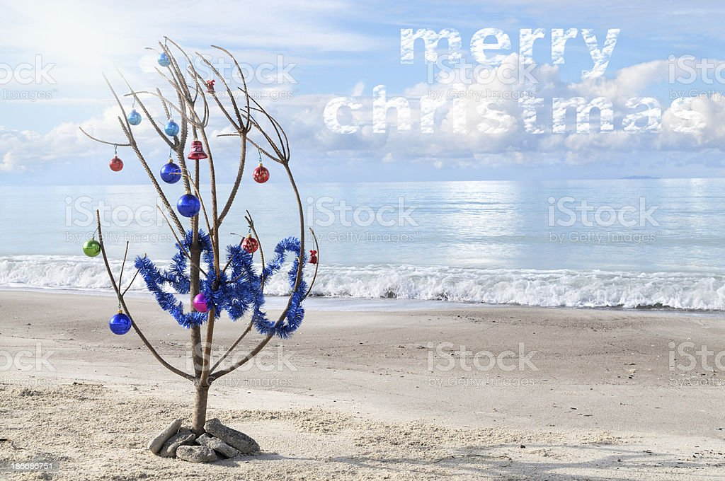 Christmas Tree by the Sea royalty-free stock photo