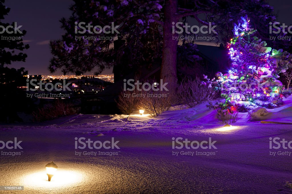 Christmas Tree & City Lights royalty-free stock photo