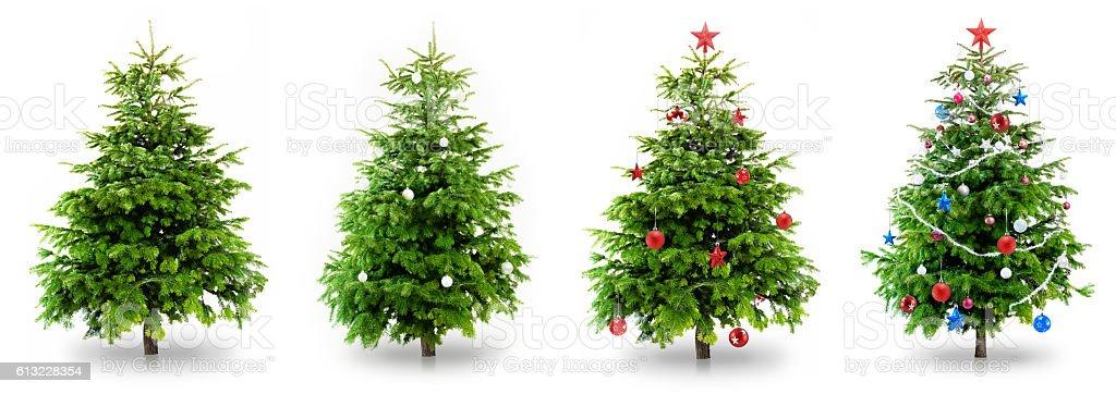 Árvore de Natal Collection - foto de acervo
