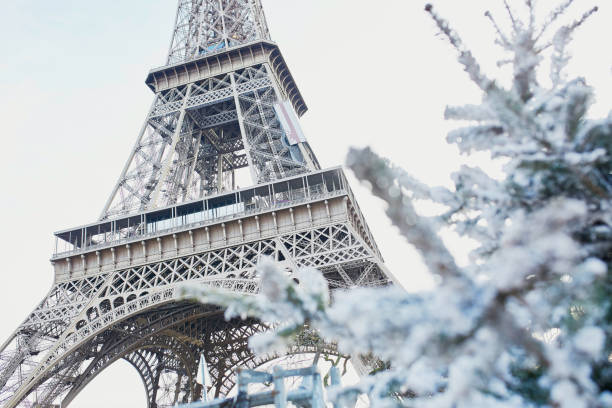Christmas tree covered with snow near Eiffel tower stock photo