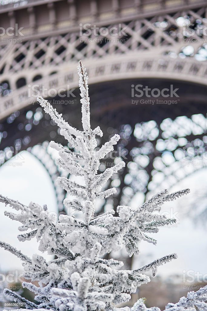 Christmas tree covered with snow near the Eiffel tower photo libre de droits
