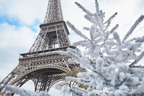 Christmas tree covered with snow near the Eiffel tower – Foto