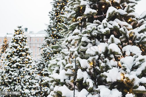 875265254 istock photo Christmas tree covered with snow 1061879942