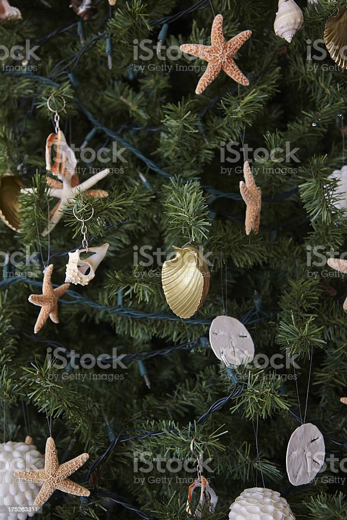 Christmas Tree Decorated With Tidepool Sea Creatures royalty-free stock photo
