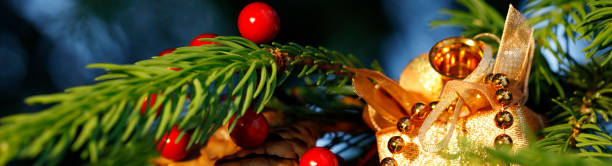 christmas tree decoration - pinaceae stock photos and pictures