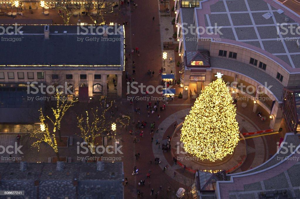 Christmas Tree display stock photo