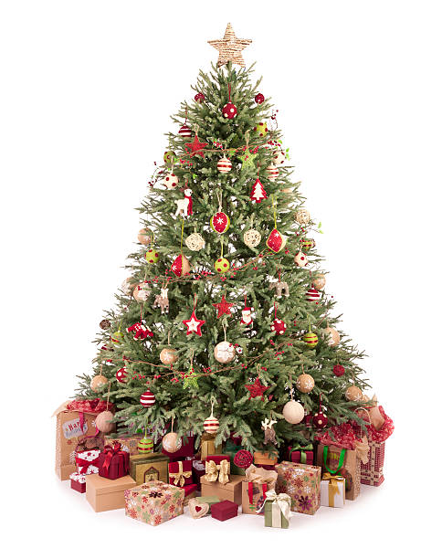 Christmas Tree Pictures Images And Stock Photos IStock - Eco Friendly Christmas Tree