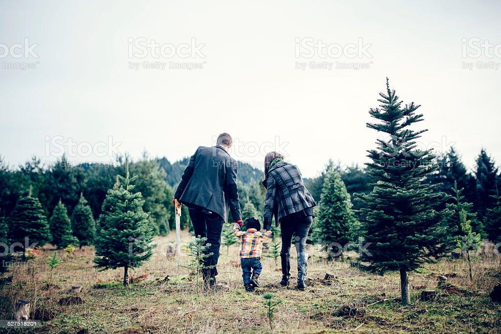 Christmas Tree Family at Tree Farm stock photo