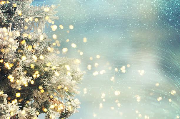 Christmas tree. Holiday background. stock photo
