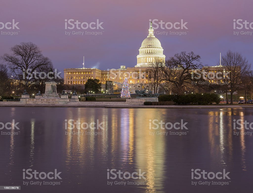Christmas tree in front of Capitol Washington DC stock photo