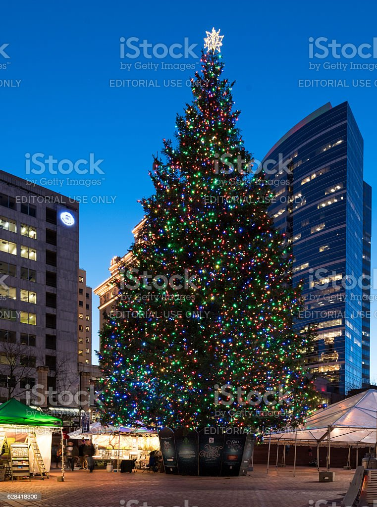 Portland Christmas Tree.Christmas Tree In Portland Downton Stock Photo More Pictures Of Celebration