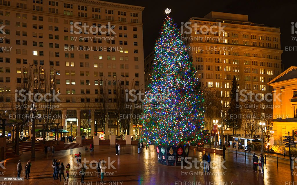 christmas tree in portland or royalty free stock photo