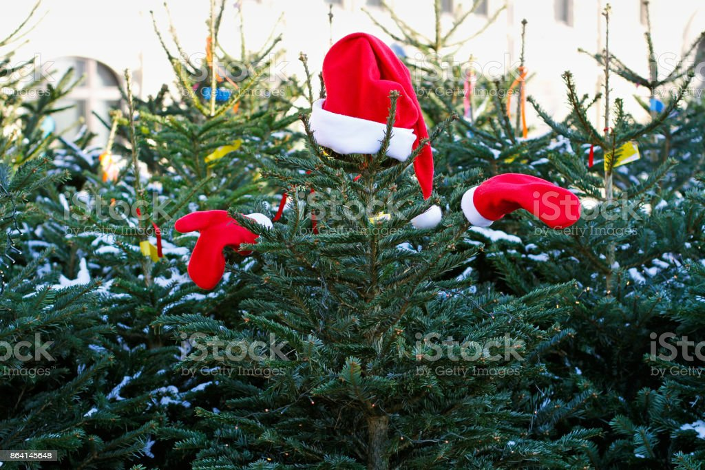 Christmas tree in Santa Claus suit royalty-free stock photo