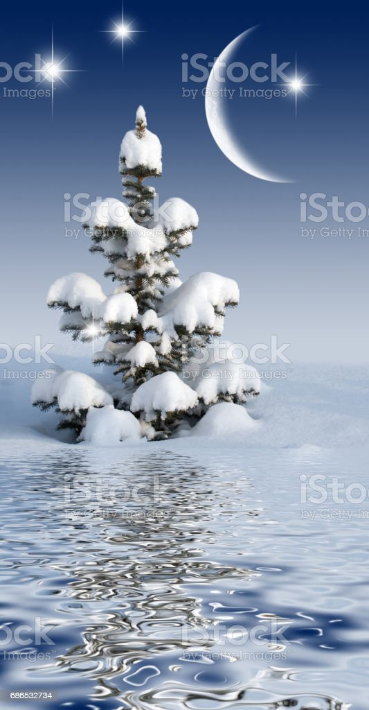 christmas tree in the night sky zbiór zdjęć royalty-free