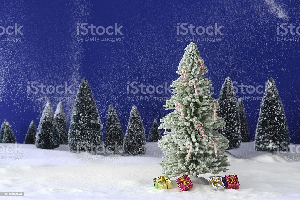 Christmas Tree in Winter stock photo