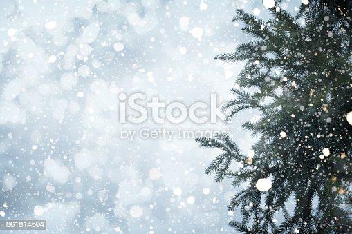 istock Christmas tree in winter 861814504