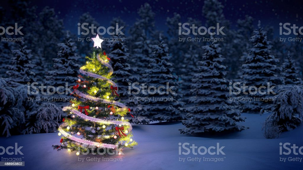 Christmas tree in woods stock photo