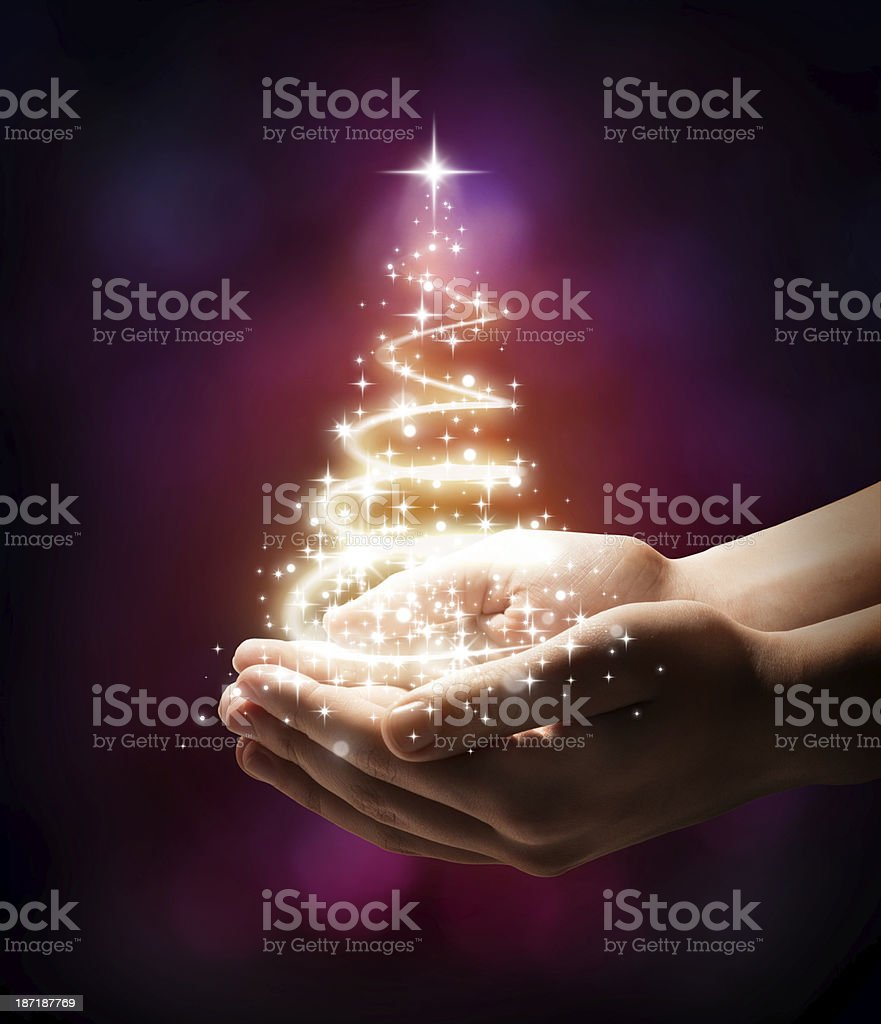 Christmas tree in your hand - red stock photo