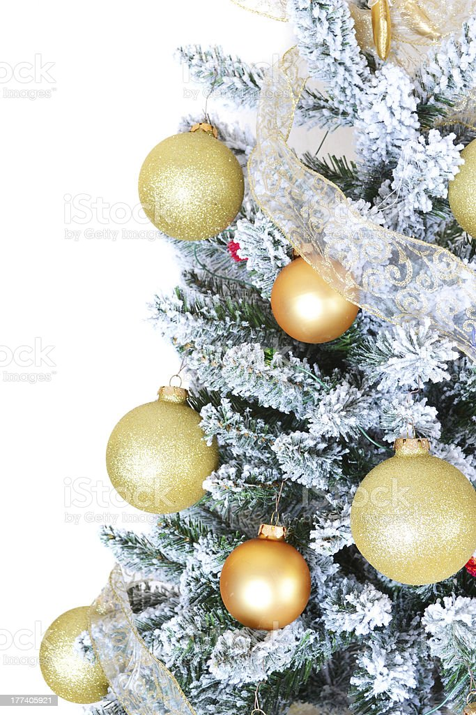 Christmas tree isolated on white stock photo