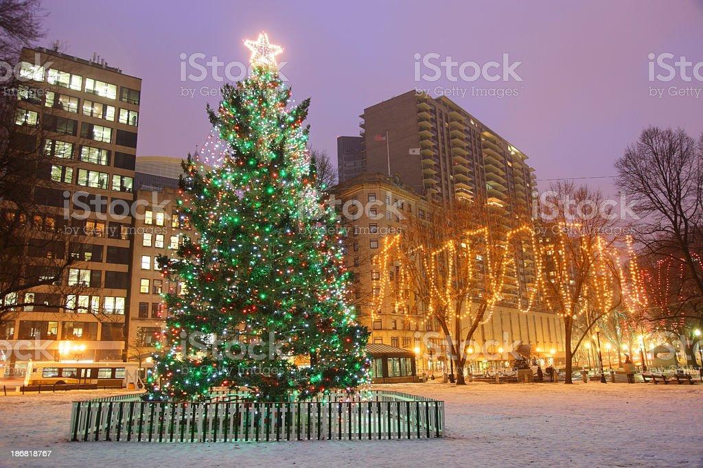 Christmas tree on Boston Common royalty-free stock photo