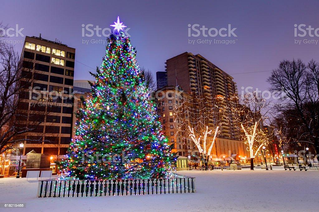 Christmas In Boston Massachusetts.Christmas Tree On Boston Common Stock Photo Download Image