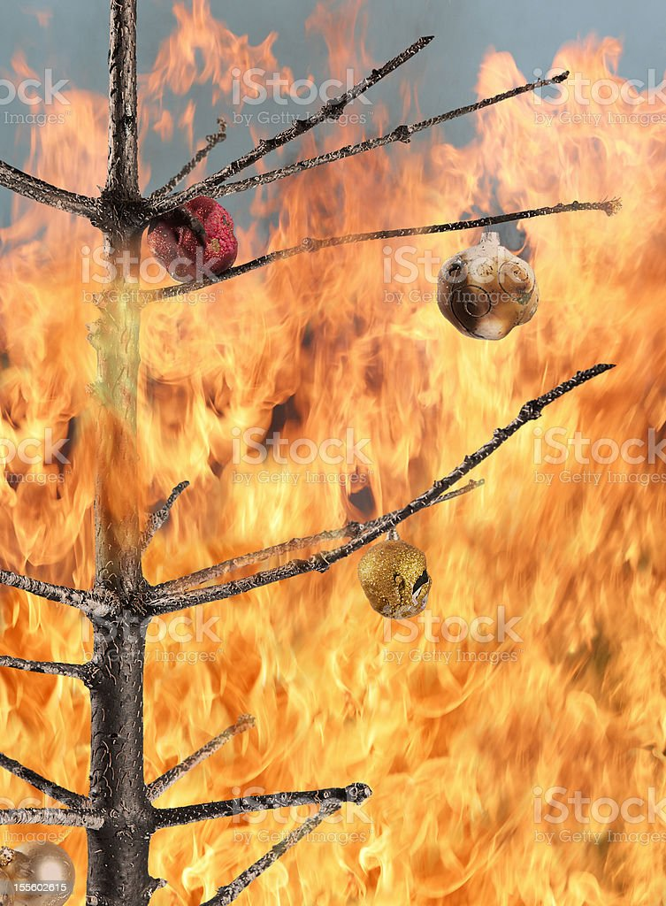 Christmas tree on fire stock photo