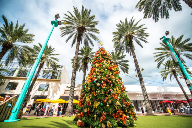 Best Miami Christmas Stock Photos, Pictures & Royalty-Free