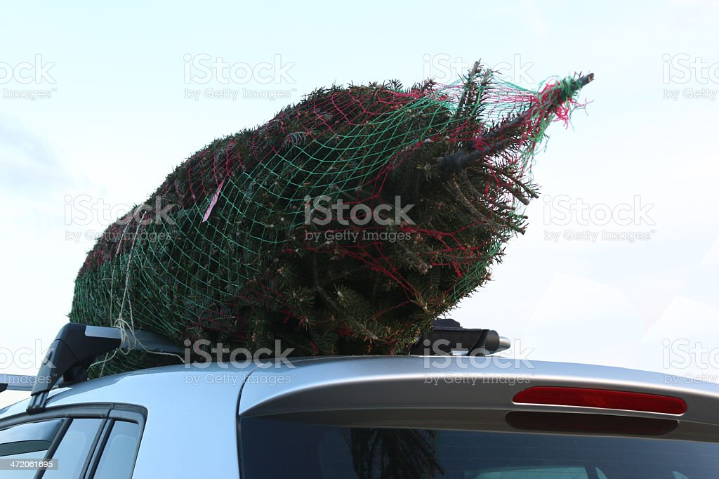 Christmas tree on roof stock photo
