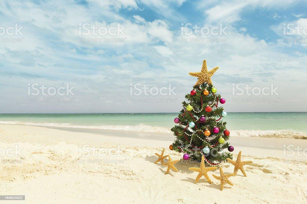 Christmas tree on sandy Caribbean beach royalty-free stock photo