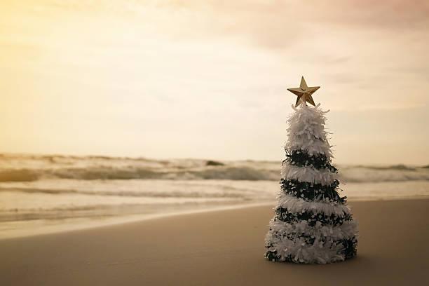 Weihnachtsbaum am Strand – Foto