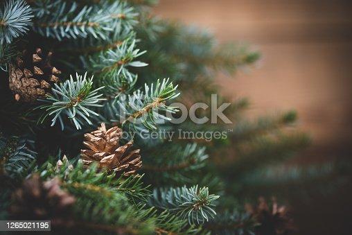 istock Christmas tree on wooden background 1265021195