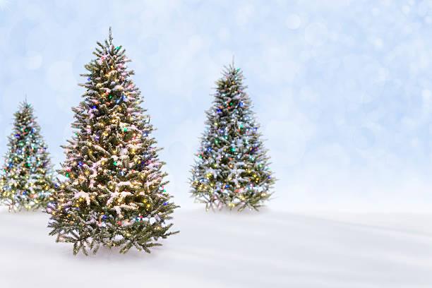 Christmas tree outdoor landscape picture id453485119?b=1&k=6&m=453485119&s=612x612&w=0&h=d8qh7qql 46uz2czoare69 7vrhwijsw b9ebgewpjk=