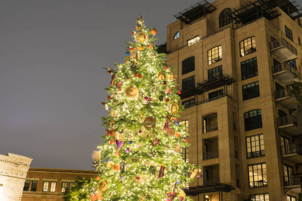 Christmas Tree Outdoors with Buildings in Background at Night stock photo