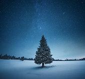 Idyllic Christmas scene: Lone snowcapped fir tree under starry night sky.