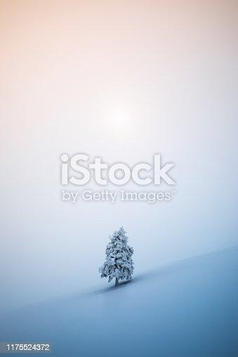 Idyllic Christmas scene: Lone snowcapped fir tree on a mountain glade.