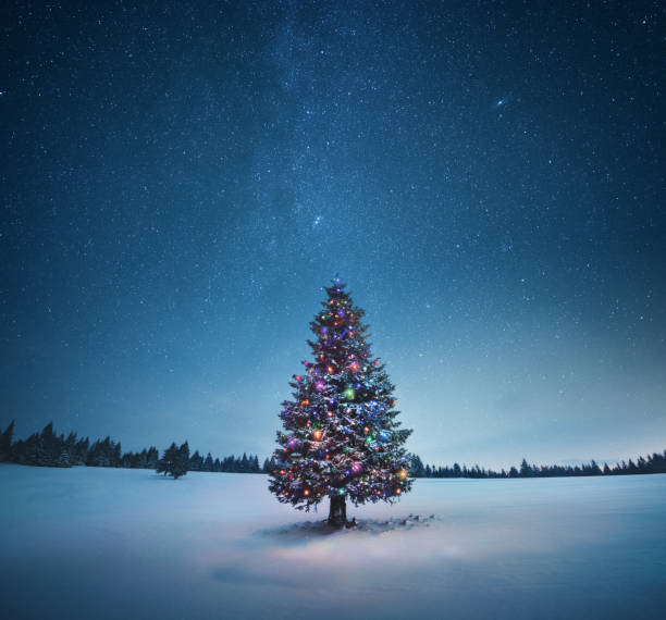 Christmas Tree Holiday background with illuminated Christmas tree under starry night sky. christmas trees stock pictures, royalty-free photos & images