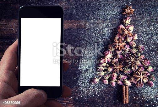 istock Christmas tree 498370956