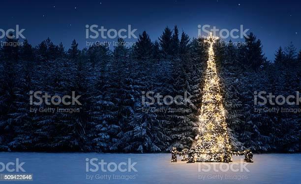 Photo of Christmas tree